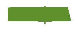logo thiết kế nagopa
